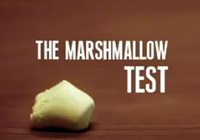 Teste do marshmallow